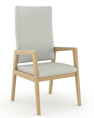 REIN PATIENT CHAIR BY CAROLINA